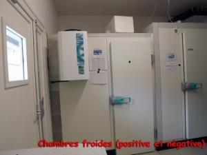 Chambres froides. Une à température positive et une à température négative.